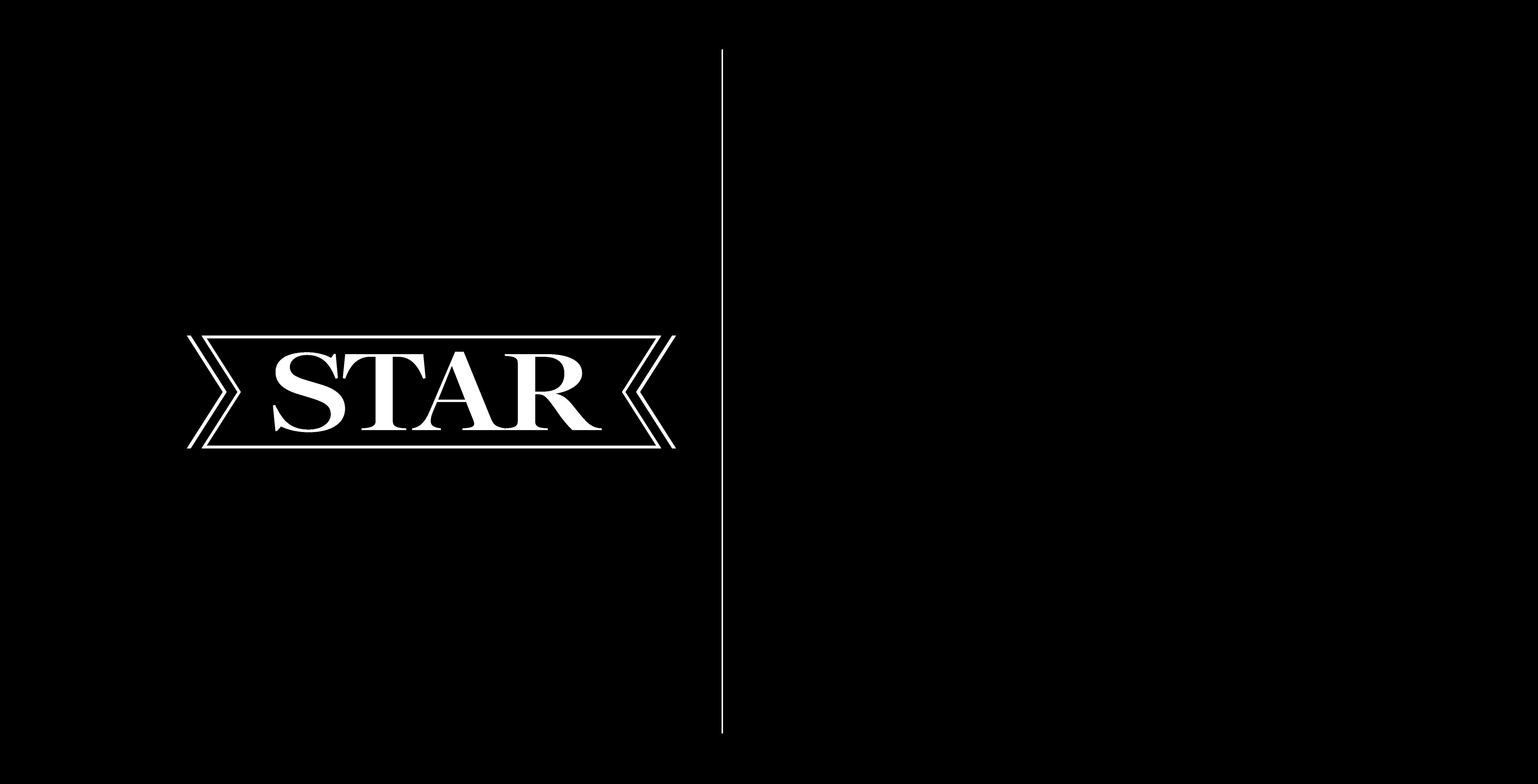 TS-logo-half